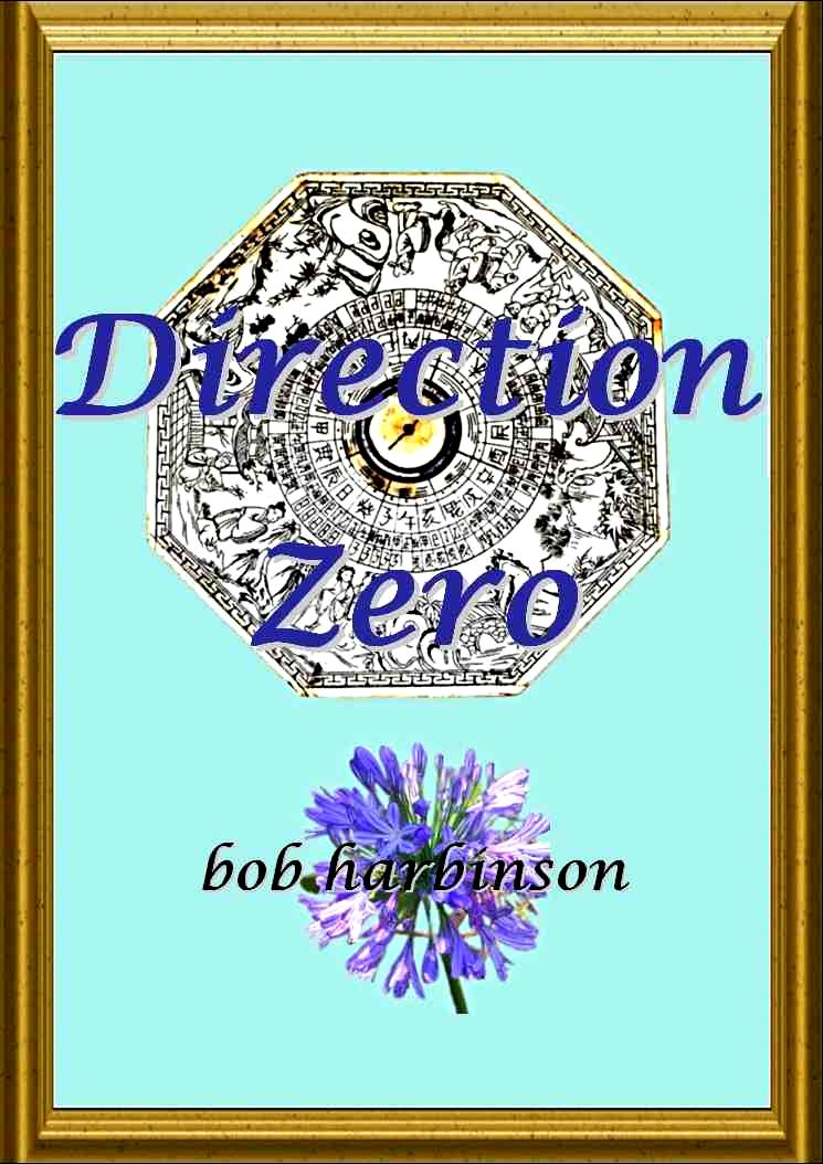 ZERO DIRECTION book front cover